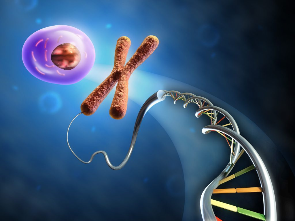DNA-to-cell